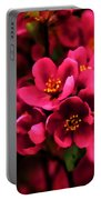 Dark Spring Dreams Portable Battery Charger