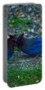 Darling I Have To Tell You A Secret-sweet Stellar Jay Couple Portable Battery Charger