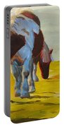 Dartmoor Ponies Portable Battery Charger