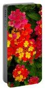 Day Glo Summer Portable Battery Charger