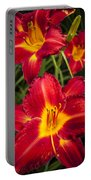 Day Lilies Portable Battery Charger by Adam Romanowicz
