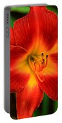 Day Lily1 Portable Battery Charger
