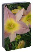 Daylilies Portable Battery Charger