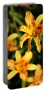 Daylillies0107 Portable Battery Charger