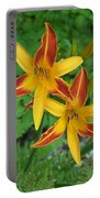 Frans Hall Daylily Attention Getter Portable Battery Charger