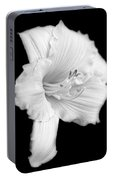 Daylily Flower Portrait Black And White Portable Battery Charger