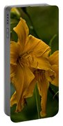 Daylily Picture 474 Portable Battery Charger