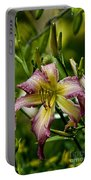 Daylily Picture 494 Portable Battery Charger