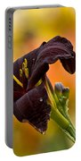 Daylily Picture 514 Portable Battery Charger