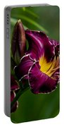 Daylily Picture 526 Portable Battery Charger