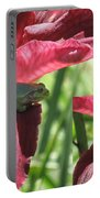 Daylily Shade For A Tree Frog Portable Battery Charger