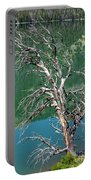 Dead Tree At Green River Lakes -wyoming Portable Battery Charger