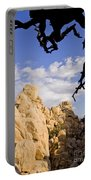 Dead Tree Limb Hanging Over Rocky Landscape In The Mojave Desert Portable Battery Charger