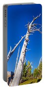 Dead White Trees Portable Battery Charger