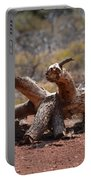 Dead Wood Crawl Portable Battery Charger
