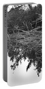 Deadfall Reflection In Black And White Portable Battery Charger