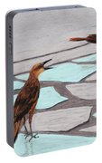 Death Valley Birds Portable Battery Charger