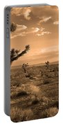 Death Valley Solitude Portable Battery Charger