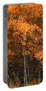 Deciduous Aspen Forest In Fall Portable Battery Charger