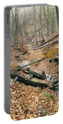 Deciduous Forest With Ravines Portable Battery Charger