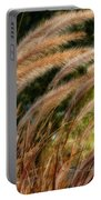 Decorative Grass Wind Autumn And Orton Portable Battery Charger