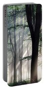 Deep Forest Morning Light Portable Battery Charger