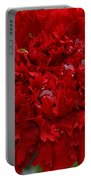Deep Red Carnation 2 Portable Battery Charger