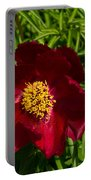 Deep Red Peony With Bright Yellow Stamens  Portable Battery Charger