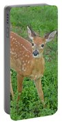 Deer 11 Portable Battery Charger