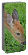 Deer 12 Portable Battery Charger
