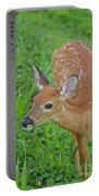 Deer 18 Portable Battery Charger