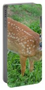 Deer 20 Portable Battery Charger