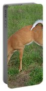 Deer 23 Portable Battery Charger