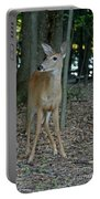 Deer 3 Portable Battery Charger