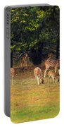 Deer At Play Portable Battery Charger
