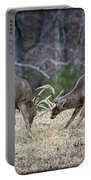 Deer Discussion E167 Portable Battery Charger