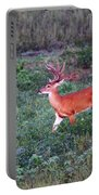 Deer-img-0113-001 Portable Battery Charger