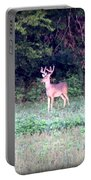 Deer-img-0122-7 Portable Battery Charger