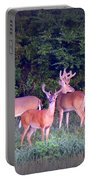 Deer-img-0150-001 Portable Battery Charger