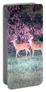 Deer-img-0151-003 Portable Battery Charger