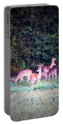 Deer-img-0158-003 Portable Battery Charger