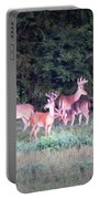 Deer-img-0158-004 Portable Battery Charger