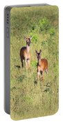 Deer-img-0283-001 Portable Battery Charger