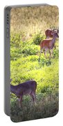 Deer-img-0437-001 Portable Battery Charger