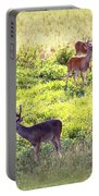 Deer - 0437-004 Portable Battery Charger