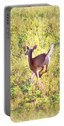 Deer-img-0456-001 Portable Battery Charger