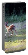 Deer-img-0459-001 Portable Battery Charger