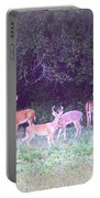 Deer-img-0470-002 Portable Battery Charger