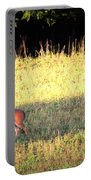 Deer-img-0627-001 Portable Battery Charger