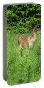 Deer In Field Portable Battery Charger